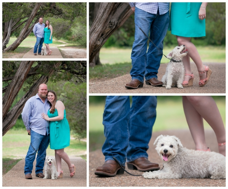Anchorage Professional Pet Photographer - Savvy Images