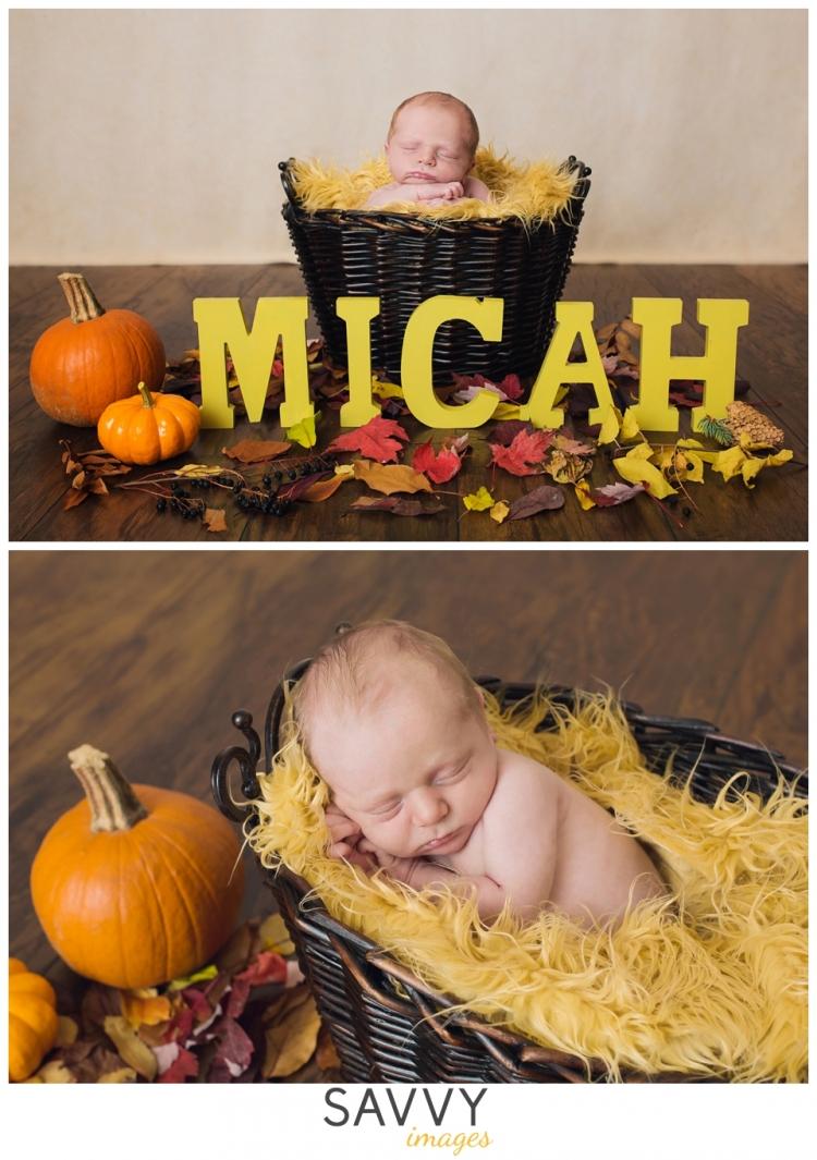 Anchorage Newborn Photographer - Bundle of Joy - Anchorage Newborn Photos