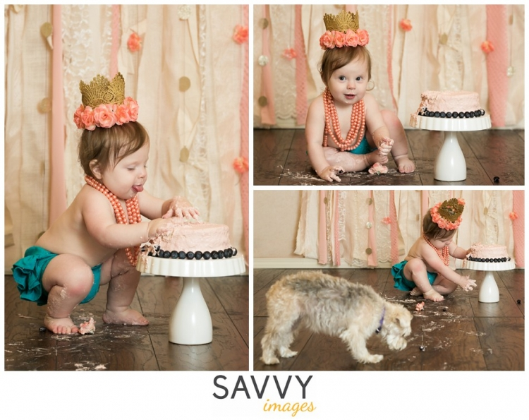 Savvy Images Cake Smash One Year Baby Photos - Houston Photographer